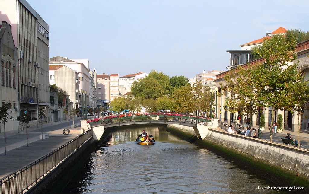 Um moliceiro desce ao longo do canal…